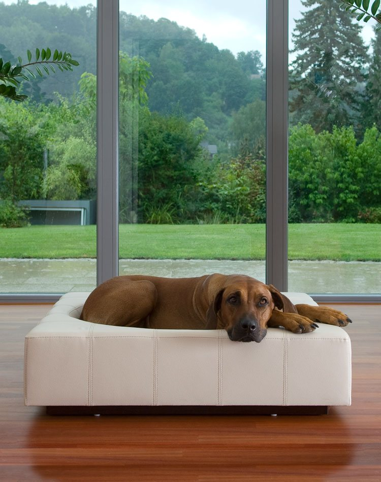 Dog Bed Cube Leather