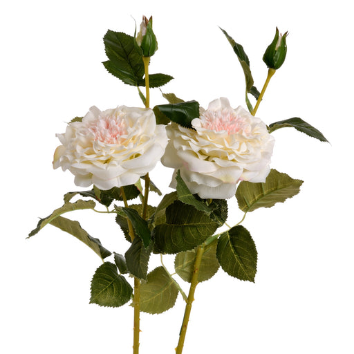 White Garden Rose Spray
