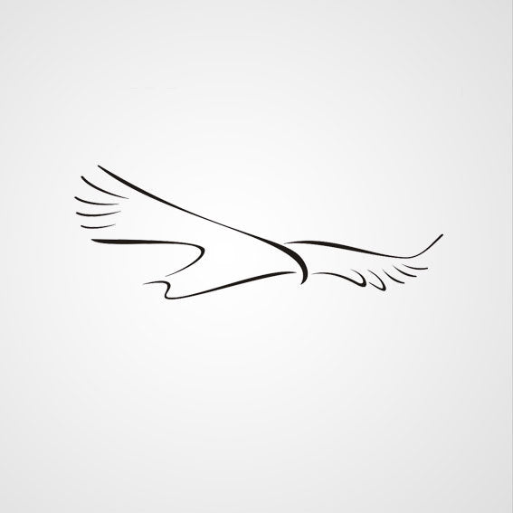 BIG FLYING BIRD ARTISTIC SKETCH Big & Small Sizes Colour Wall Sticker Kids Room Animal 'Kids142'