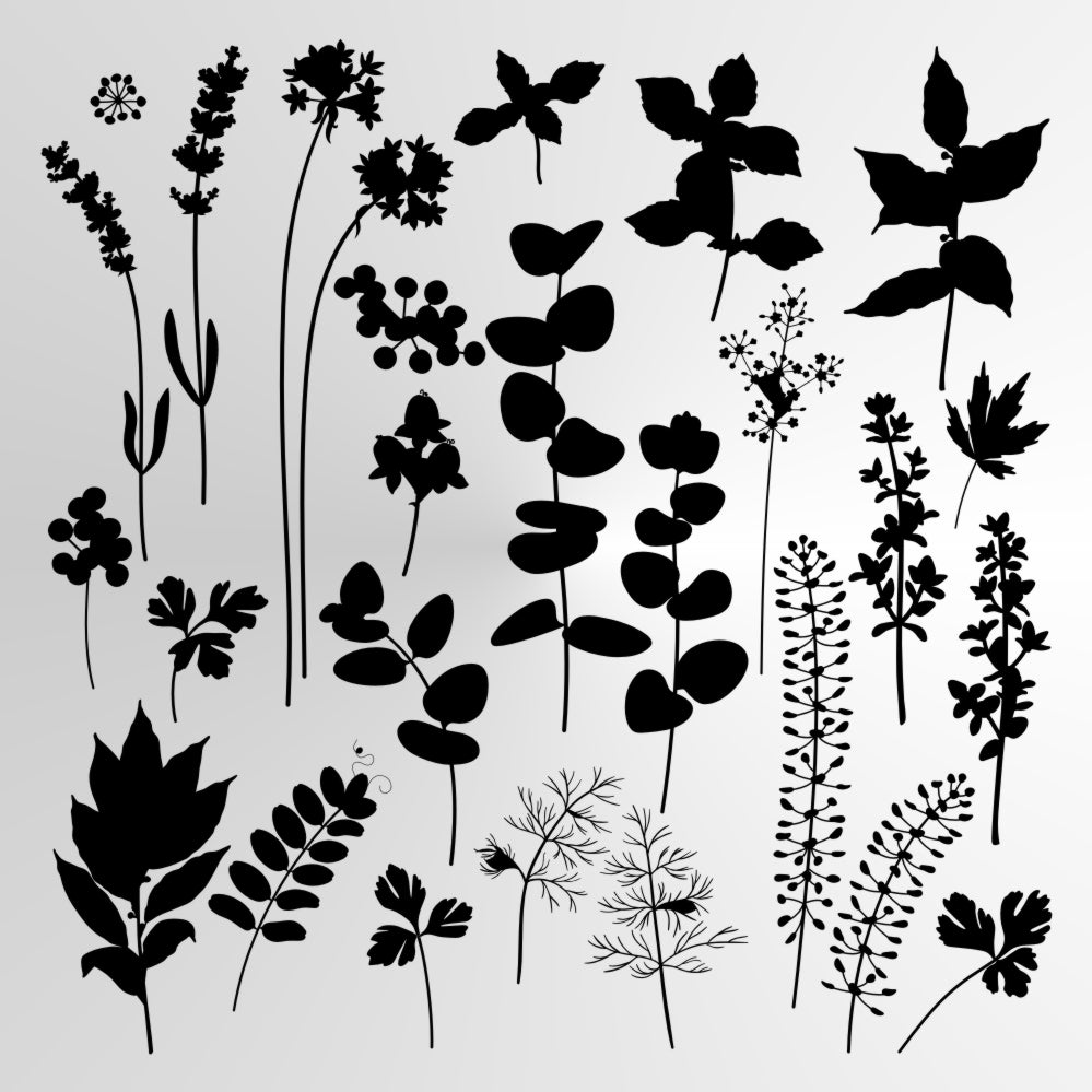 WILD HERBS AND FLOWERS Big & Small Sizes Colour Wall Sticker Floral Shabby Chic Style 'Wild1'