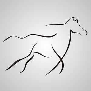 ARTISTIC HORSE SKETCH Sizes Reusable Stencil Animal Romantic Style 'Animal6'