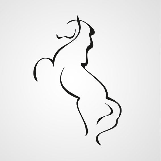 WILD HORSE ARTISTIC SKETCH Sizes Reusable Stencil Animal Romantic Style 'Animal9'