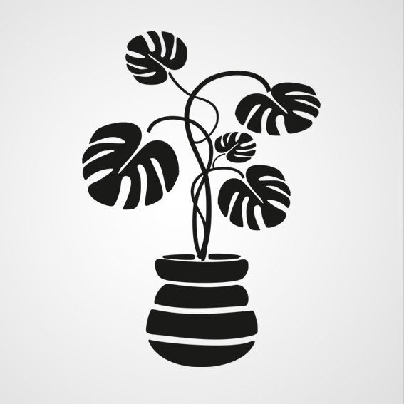 MONSTERA PLANT IN FLOWER POT Sizes Reusable Stencil Floral Style 'J11'