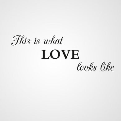 ,,THIS IS WHAT LOVE LOOKS LIKE '' QUOTE Sizes Reusable Stencil Modern Style 'Q60'