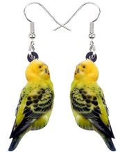 Cute budgie pierced earrings