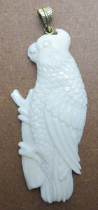 Gang Gang Cockatoo Carved Bone Pendant