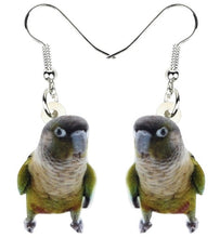 Very cute Green-cheek conure pierced earrings - forward facing view