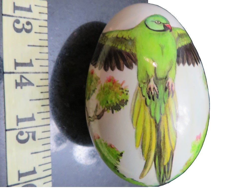 Hand-painted Swan Egg of an Indian Ringneck