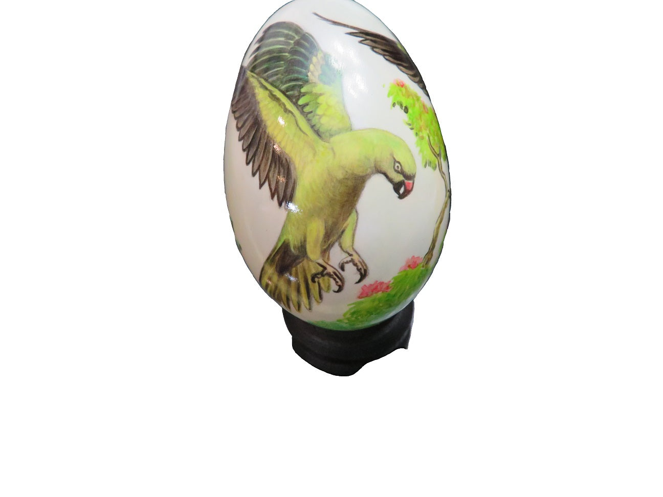 Hand Painted Swan Egg Of An Indian Ringneck Parrot Addict