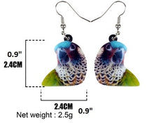 Dimensions of Painted Conure Parrot Pierced Earrings