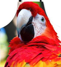 Close-up of Scarlet macaw kitchen apron