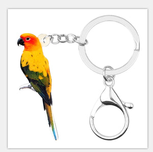 Sun Conure parrot keyring key ring key chain with attached clasp