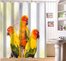 Sun Conure & Budgie Shower Curtains