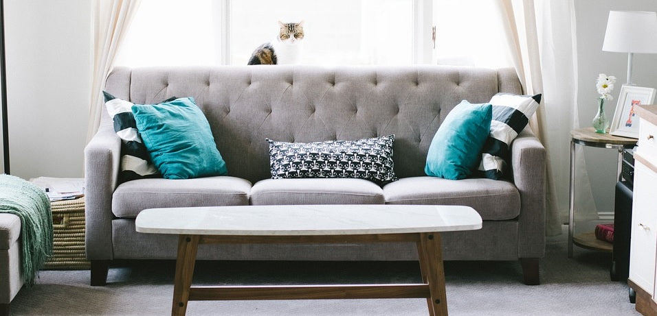 Pocket Spring Sofa Vs Foam Sofa Which Is Right For You Swift