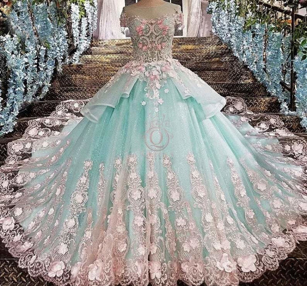 Blue Flower Short Sleeve Quinceanera Dress Sweet 16 Dress Wedding Dress