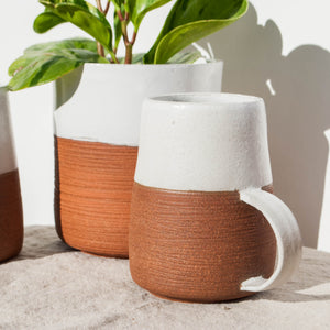 New Collection: Rise Ceramics 🌵