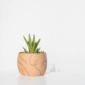 Loopy Speckle Planter