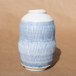 Porcelain Blue and White Jar
