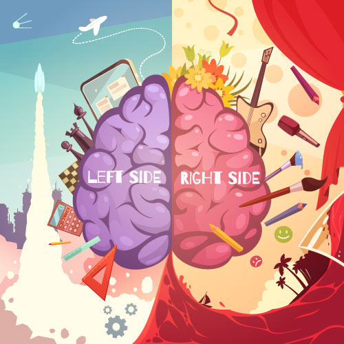 Right Brain Hemisphere vs Left Brain Hemisphere
