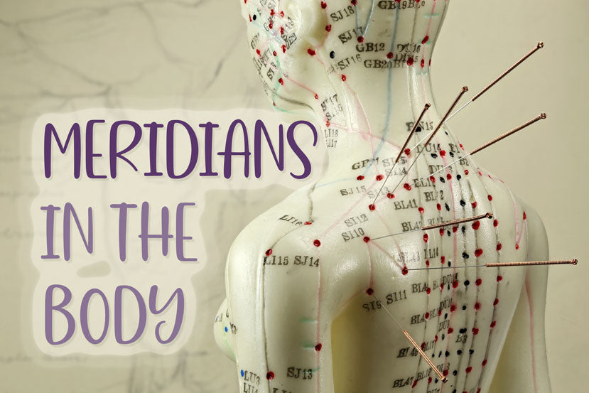 Meridians In The Body - What Are Meridians?