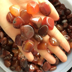 Red Agate Natural Crystal Stones (50g bag) - 7 Chakra Store