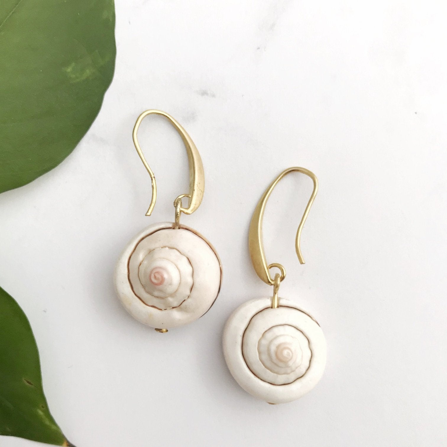 Whole Seashell Earrings