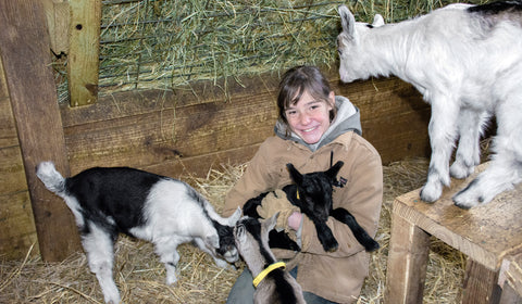 Jade With Baby Alpine Dairy Goats