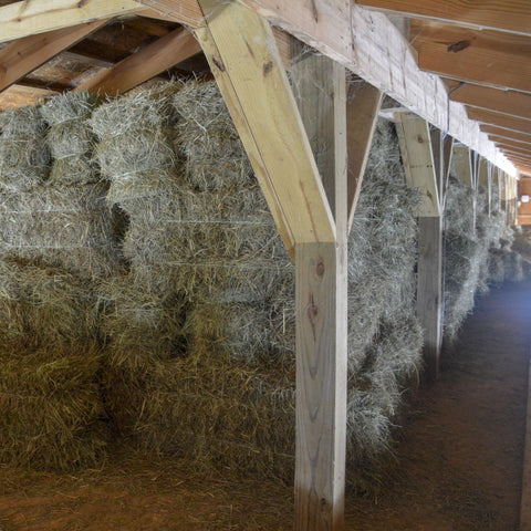 Second Cutting of Hay