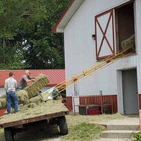Square Bales Go Up the Hay Elevator into the Loft at Goat Milk Stuff