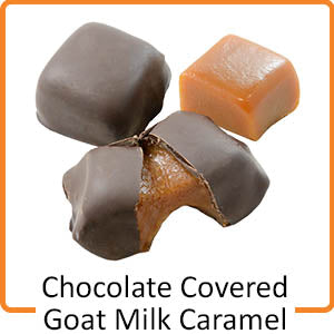 chocolate covered goat milk caramel