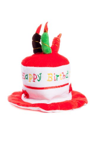 BFlowerYan Pack fo 2 Happy Birthday Cake Novelty Hat with Candles for Kids