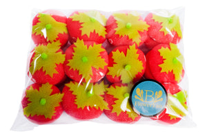 BFlowerYan 12pcs Soft Sponge Cute Strawberry Style Hair Curler Balls