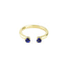 READY TO SHIP | PASSAGE RING | 14k GOLD & SAPPHIRE