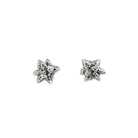 NORTHERN LIGHTS CRYSTAL CAST STUDS | SILVER - AngelaMonacojewelry
