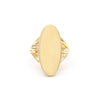 NEW | ROOTS SIGNET RING | GOLD VERMEIL - AngelaMonacojewelry