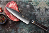 67 layer Damascus Steel Chef's Knife with Ebony Wood Handle
