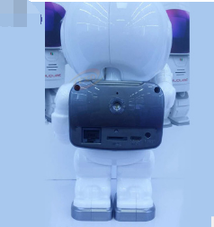 Robot Wifi Monitoring Camera connect to app on your smart phone