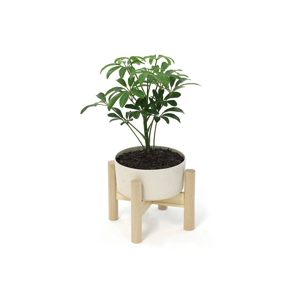 Wooden Tabletop Planter