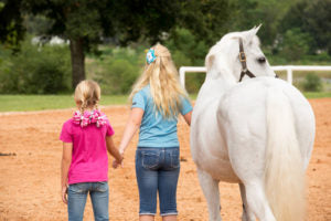 A Parent's guide to Horse Shows