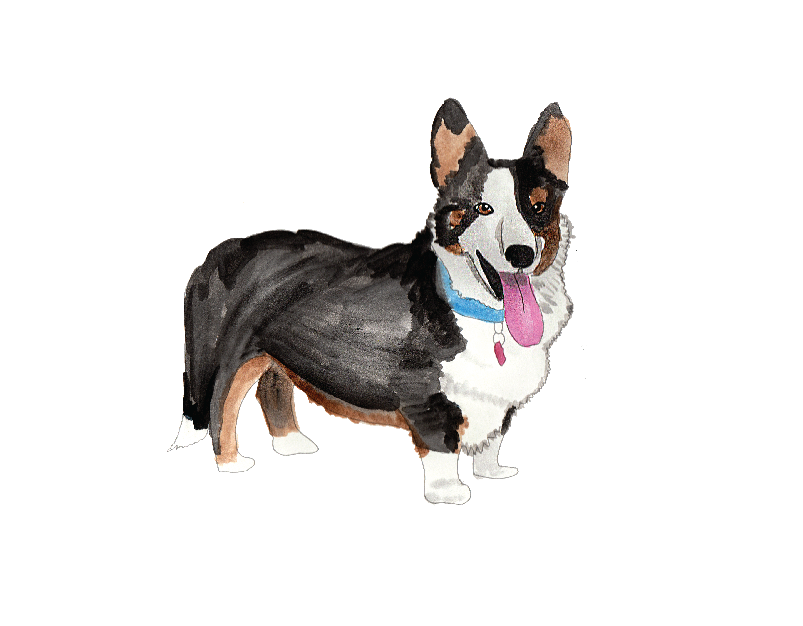 GIFT CARD for Custom Pet Painting