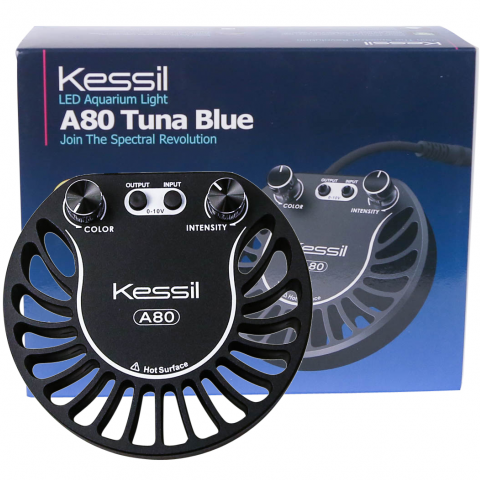 Kessil Tuna Blue A80 LED Light