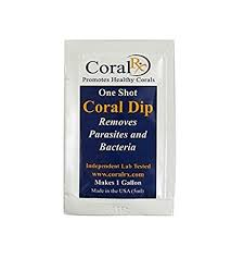 Coral RX One Shot Coral Dip