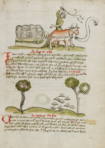 "Unknown:A Farmer Driving an Ox and Wagon; Swarms of Insects,16x12""(A3)Poster"