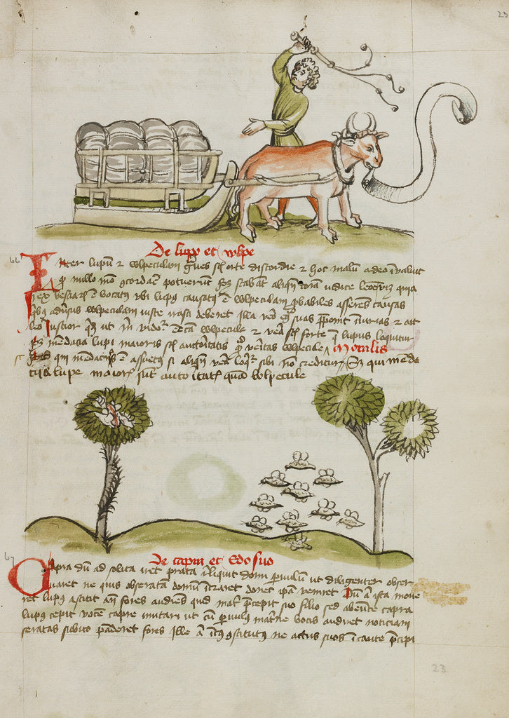Unknown:A Farmer Driving an Ox and Wagon; Swarms of Insects,16x12