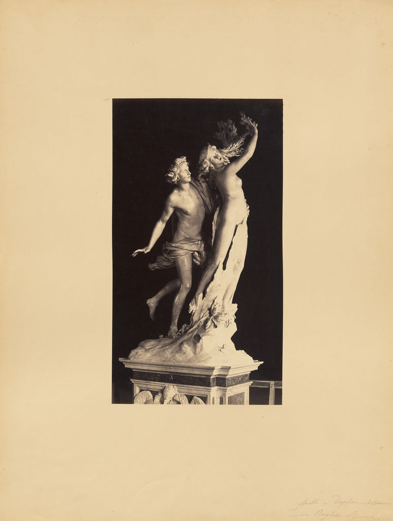 James Anderson:Bernini's Apollo and Daphne,16x12