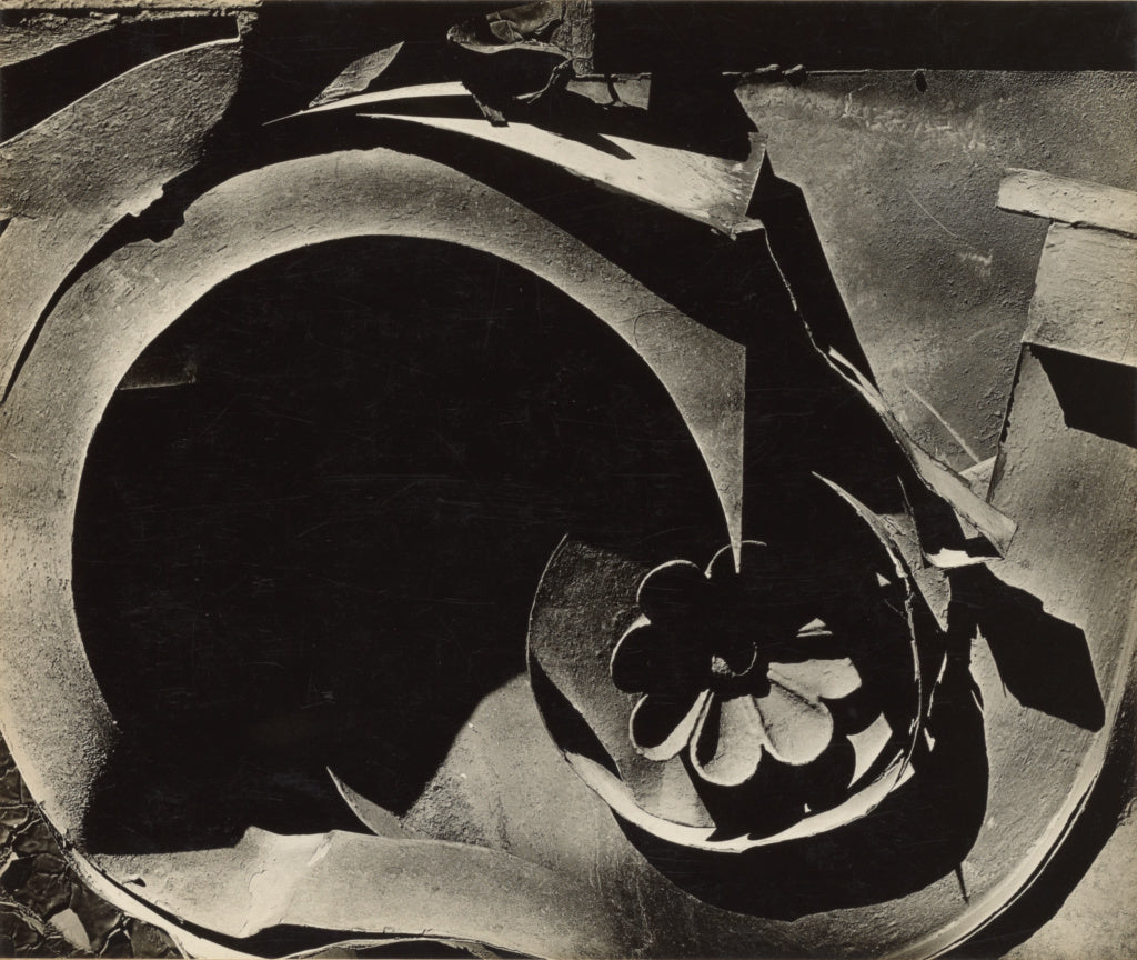 Walker Evans:Tin Relic,16x12