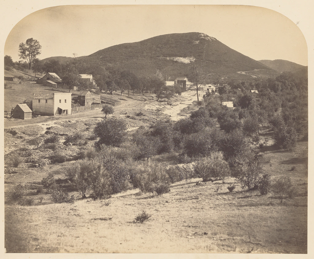 Carleton Watkins:Mount Ophir, Looking South,16x12