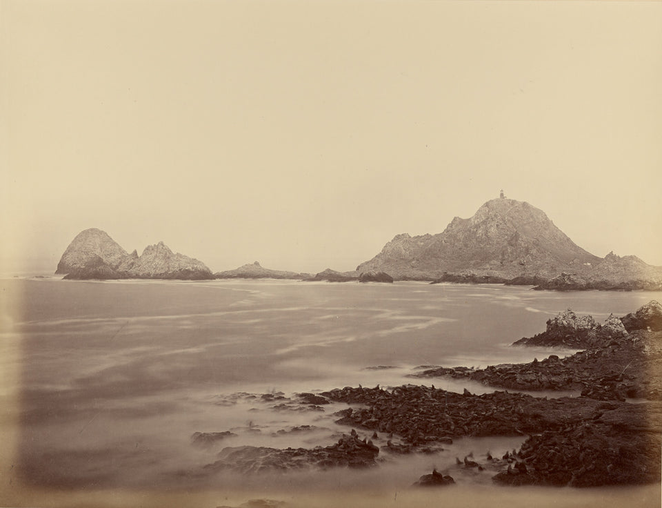"Carleton Watkins:[Seal Point from the West End, Farallons],16x12""(A3)Poster"
