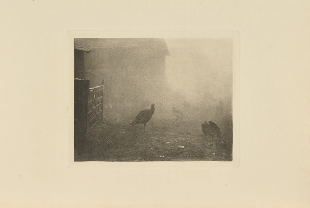 Peter Henry Emerson:A Corner of the Farm-Yard,16x12