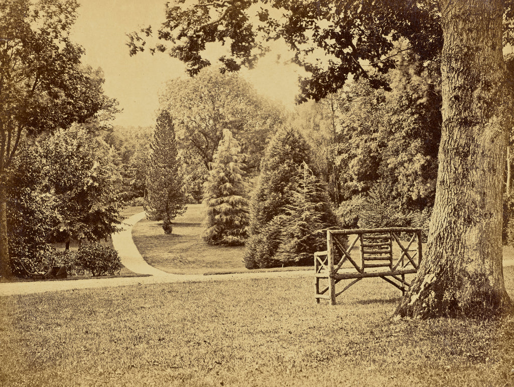 William M. Lawrence:[Wooden Bench in Park],16x12